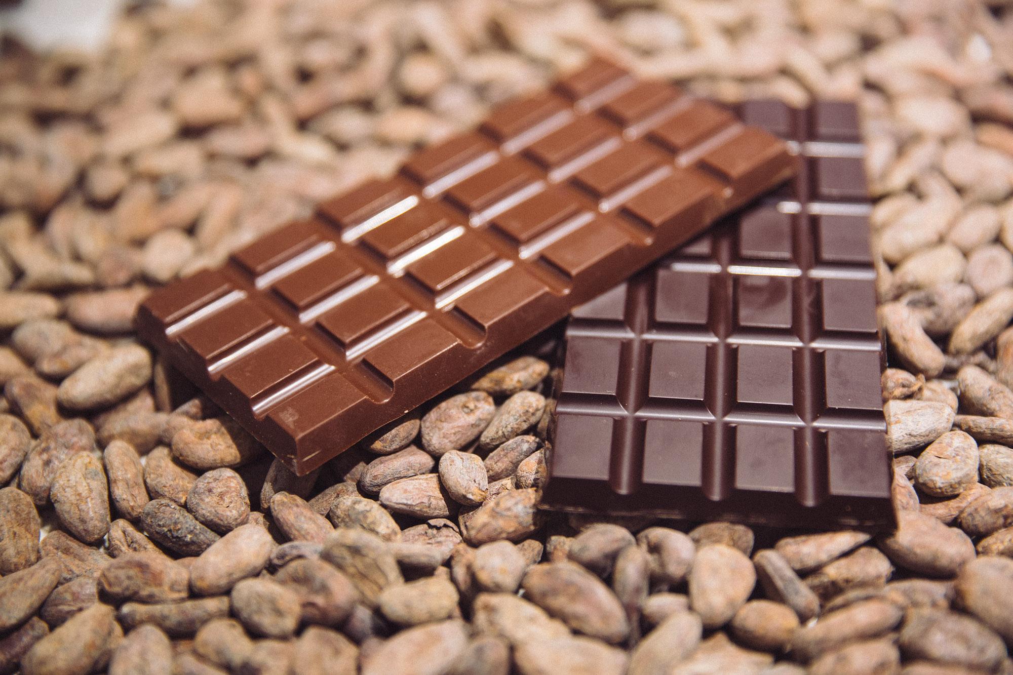 Afirman el chocolate podría acabarse en 40 años