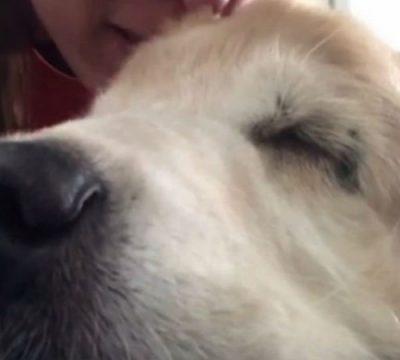 La Conmovedora Despedida De Una Mujer A Su Perro Le Cantó