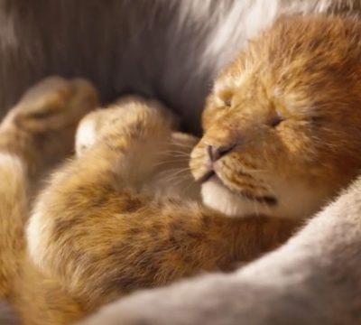 rey leon trailer oficial
