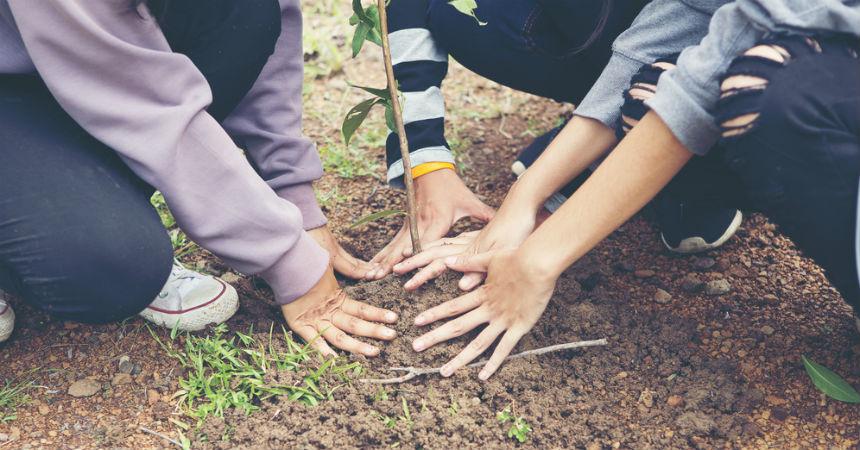 filipinas estudiantes plantan arboles para graduarse