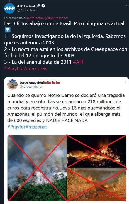 imagenes falsas amazonas