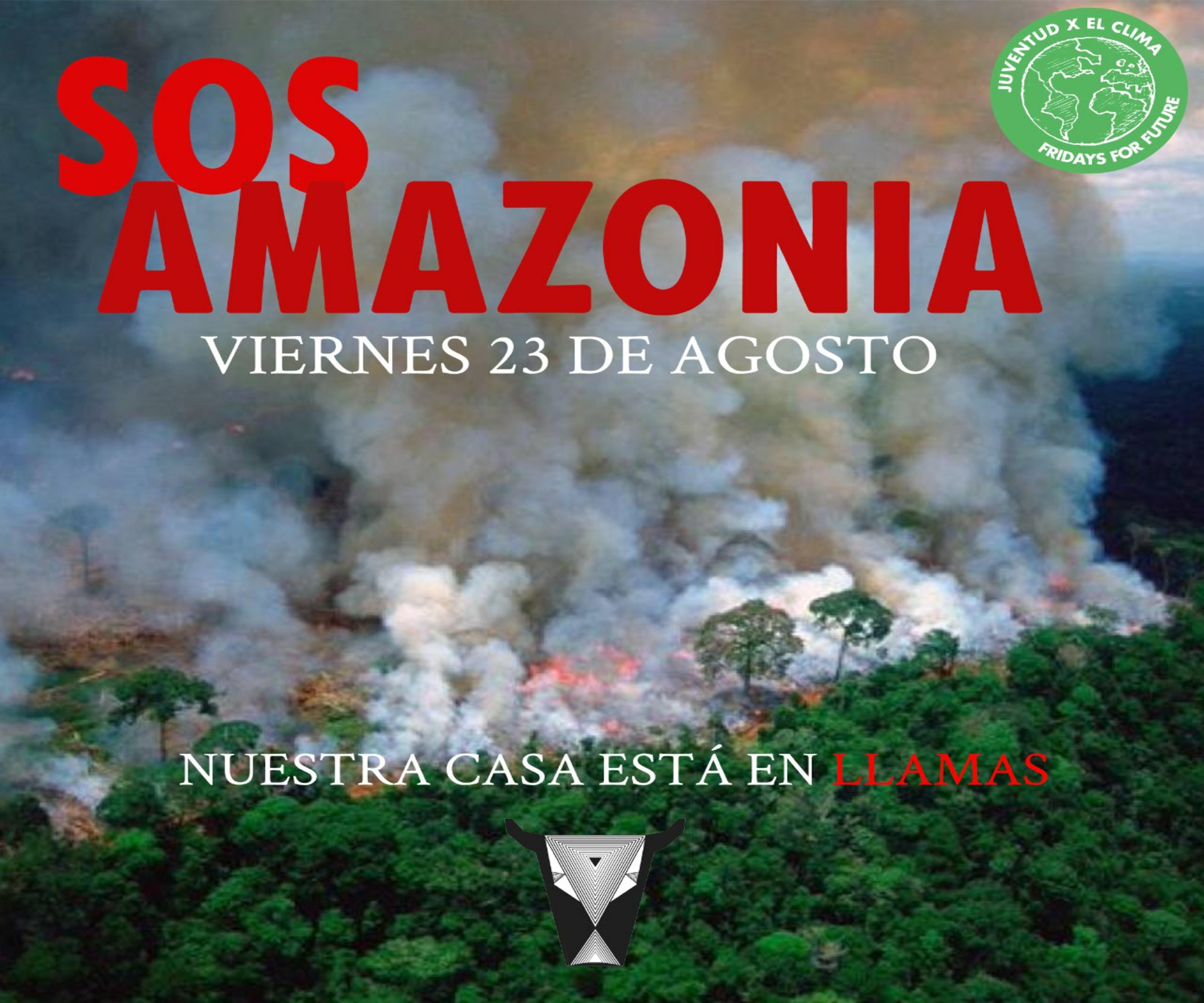 protestas incendio amazonas