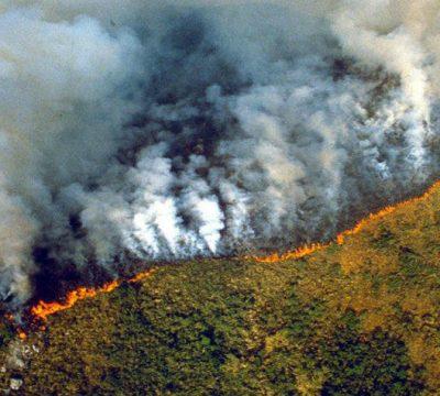 Resultado de imagen para incendio amazonas