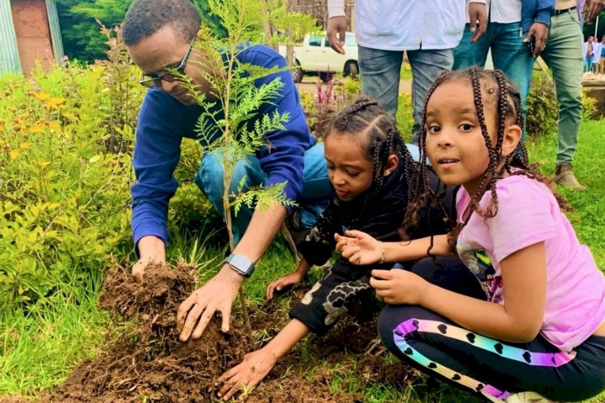 Etiopia record árboles