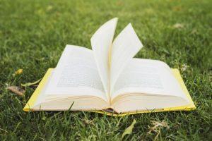 primavera del libro 2019 providencia