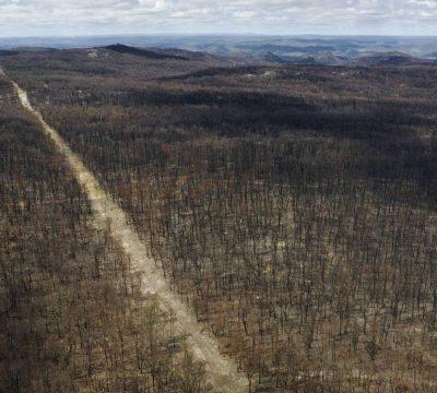 Australia: Lluvias ayudan a combatir fuego de los incendios