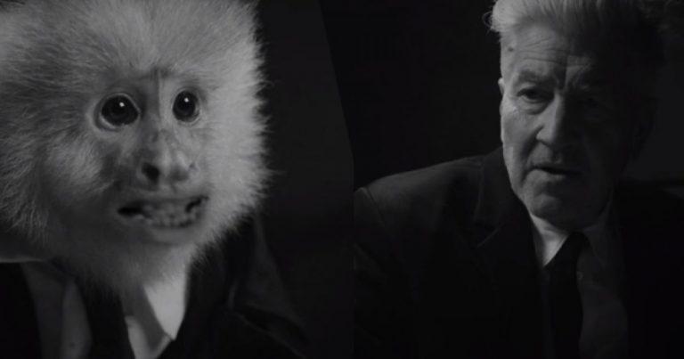 David Lynch está de cumpleaños y celebra subiendo material a Netflix