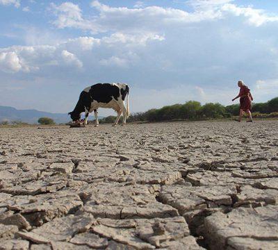 Greenpeace critica al Senado por rechazar proyecto sobre el uso de agua