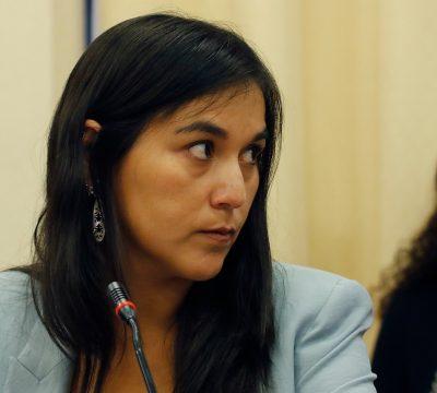 Colegio Médico se reunirá con partidos políticos por pertinencia de plebiscito