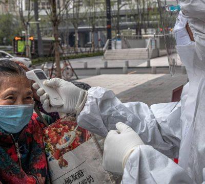 Ya no se podrán consumir gatos ni perros en ciudad de China