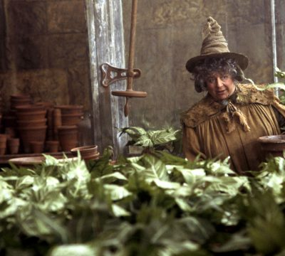 """Actriz de Harry Potter causa polémica: """"Quería que Boris Johnson muriera"""""""