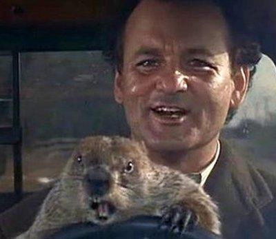 serie dia de la marmota2