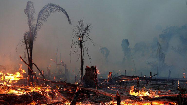 incendios amazonas 20202
