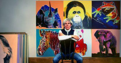 Andy Warhol vinyl pelicula