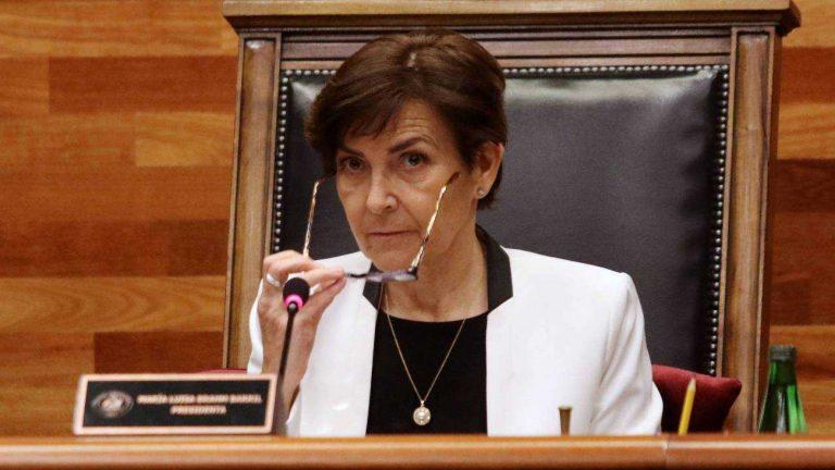 tribunal constitucional María Luisa Brahm