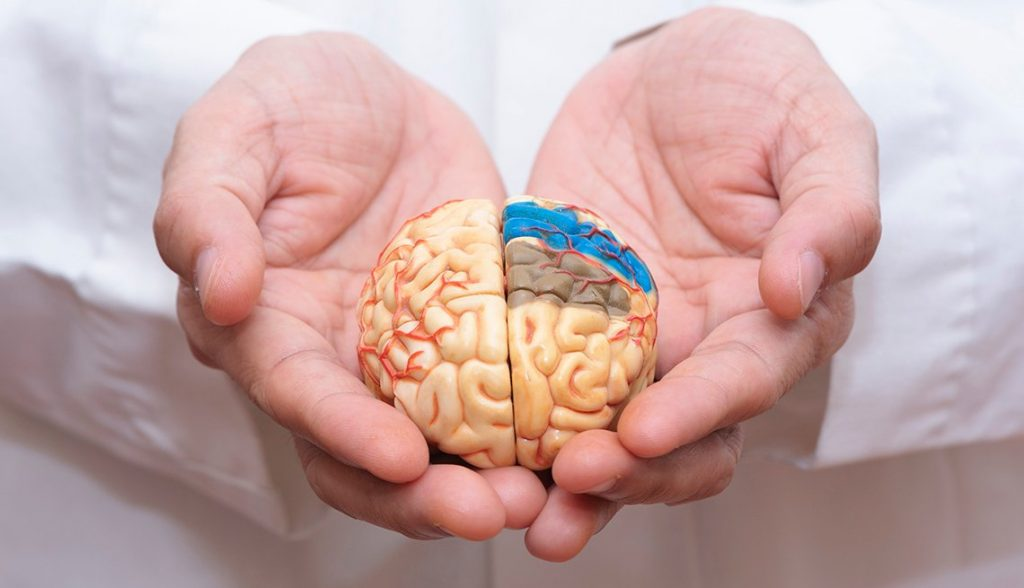 1140 Alzheimers What We Know.web