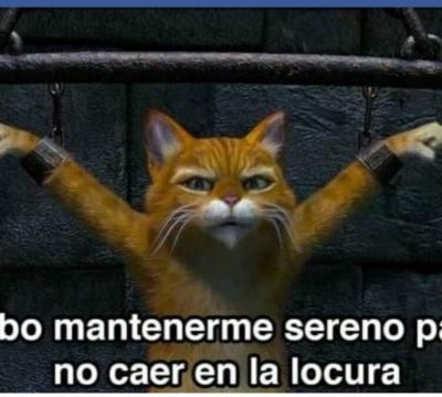 Meme (1)